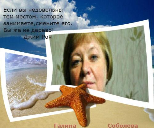 52396009_dDsjJ_1387211979 моё изображение